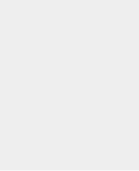 copy2-home-icon2